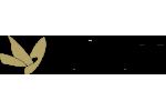 Μελένια Ομορφιά - Anaplasis